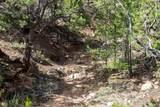 7545 Old Santa Fe Trail - Photo 11