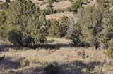 10 Tamarisk Trail Lot 532 - Photo 12