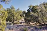 10 Tamarisk Trail Lot 532 - Photo 4