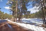 0 Elk Trail - Photo 23
