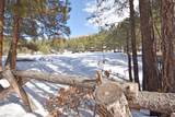 0 Elk Trail - Photo 24