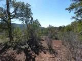 98 Valencia Ranch Rd - Photo 15