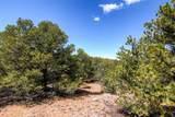 7254 Old Santa Fe Trail - Photo 4
