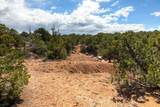 7254 Old Santa Fe Trail - Photo 5
