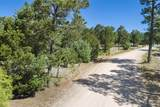 47 Silver Feather Trail Lot 6 - Photo 16