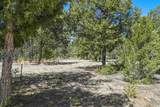 47 Silver Feather Trail Lot 6 - Photo 18