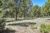 47 Silver Feather Trail Lot 6 - Photo 21