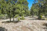 47 Silver Feather Trail Lot 6 - Photo 23