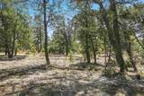47 Silver Feather Trail Lot 6 - Photo 25