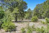 47 Silver Feather Trail Lot 6 - Photo 26