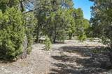 47 Silver Feather Trail Lot 6 - Photo 27