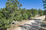 47 Silver Feather Trail Lot 6 - Photo 28