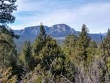 Lot 3 Santa Fe Mountain Ranch - Photo 16