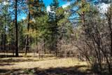 Bk 2, Lot 23 Hollow Oak, Brazos Estates - Photo 11