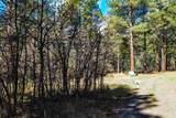 Bk 2, Lot 23 Hollow Oak, Brazos Estates - Photo 13