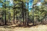 Bk 2, Lot 23 Hollow Oak, Brazos Estates - Photo 7