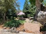 401 Camino De La Placita - Photo 20