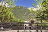 7519 Old Santa Fe Trail - Photo 32