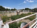 110 Piedra Loop - Photo 55