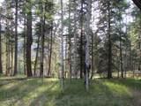 31 Grass Mountain Rd (Cabin H) - Photo 6