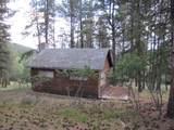 Lot 3 Grass Mountain (Cabin) - Photo 1