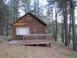 Lot 3 Grass Mountain (Cabin) - Photo 2
