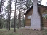 Lot 3 Grass Mountain (Cabin) - Photo 6