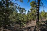 4A Ponderosa Ridge, Lot 2 - Photo 4