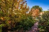 328 Camino Cerrito - Photo 36