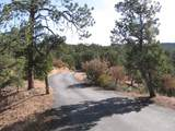 71 Apache Canyon Trail - Photo 19