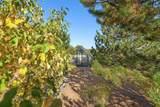 11 Sierra Dawn - Photo 27