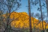 254 Pacheco Canyon - Photo 29