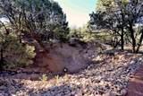 208 Camino Del Norte - Photo 41