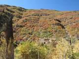 270 Dalton Canyon - Photo 16