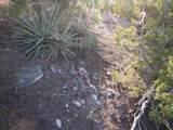 1030 Sierra Del Norte - Photo 6