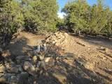 1030 Sierra Del Norte - Photo 9