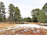 Lot 2 Hermit's Peak Ranches - Photo 1