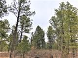 Lot 2 Hermit's Peak Ranches - Photo 2
