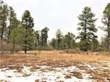 Lot 2 Hermit's Peak Ranches - Photo 4
