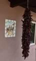 508 Camino Solano - Photo 2