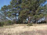 0 Tract 1, Lakes On The Chama - Photo 3