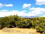 2 Silver Mesa, Lot 12 - Photo 2