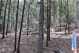 0 Squirrel Trail - Photo 11