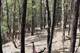 0 Squirrel Trail - Photo 13
