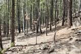 0 Squirrel Trail - Photo 14
