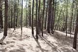 0 Squirrel Trail - Photo 15
