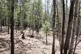0 Squirrel Trail - Photo 17