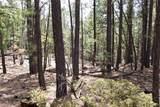 0 Squirrel Trail - Photo 18