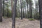 0 Squirrel Trail - Photo 4