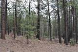0 Squirrel Trail - Photo 5